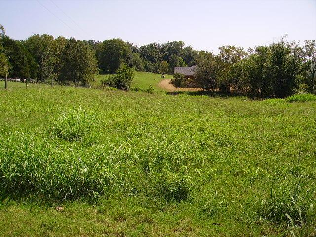 1 Lot #1 Rivercrest Lane, Castalian Springs, TN 37031 (MLS #1215312) :: John Jones Real Estate LLC