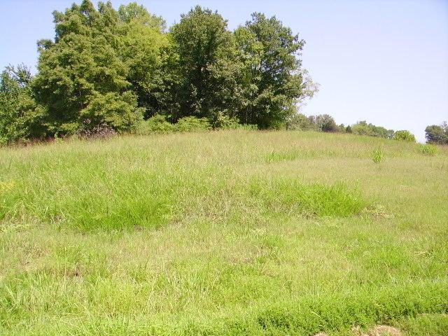 3 Lot #3 Rivercrest Lane, Castalian Springs, TN 37031 (MLS #1215487) :: John Jones Real Estate LLC