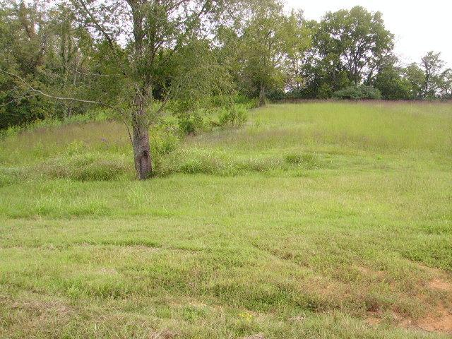 16 Lot #16 Rivercrest Lane, Castalian Springs, TN 37031 (MLS #1215636) :: John Jones Real Estate LLC