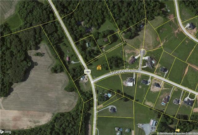 2101 Trieste Trl - Lot 47, Adams, TN 37010 (MLS #1562263) :: Nashville On The Move