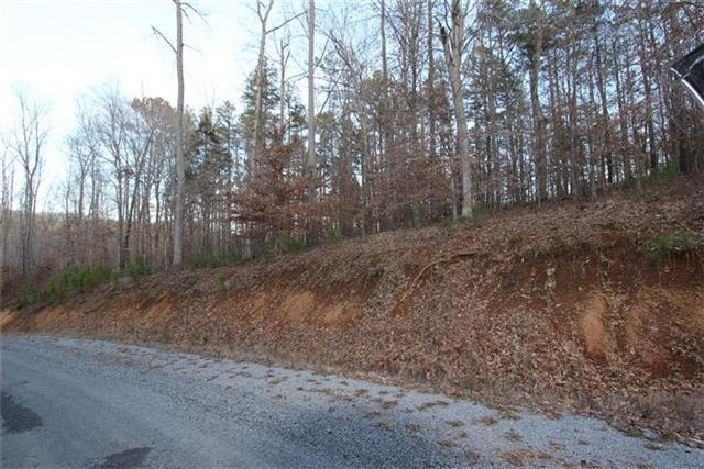 13 Autumn Trail, Dover, TN 37058 (MLS #1605241) :: CityLiving Group