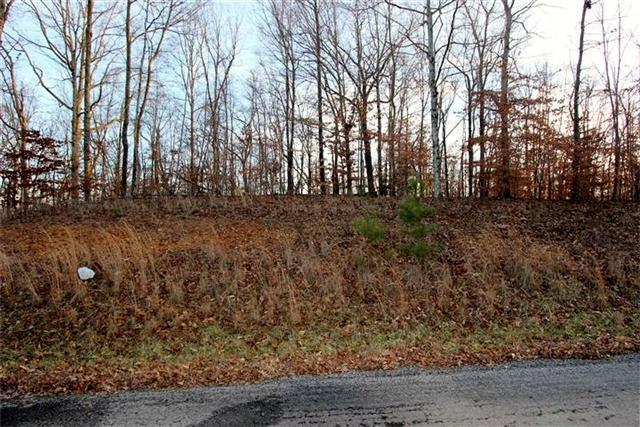 9 Autumn Trail, Dover, TN 37058 (MLS #1605843) :: CityLiving Group