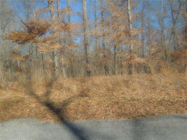 19 Autumn Trail, Dover, TN 37058 (MLS #1607537) :: CityLiving Group