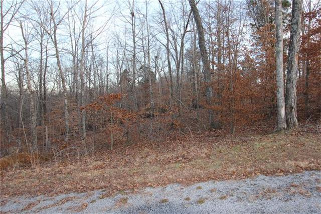 30 Autumn Trail, Dover, TN 37058 (MLS #1608574) :: CityLiving Group