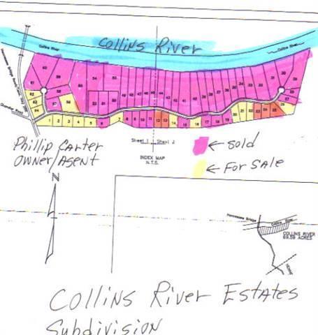 20 Collins River Drive, Rock Island, TN 38581 (MLS #RTC1704658) :: Nashville on the Move