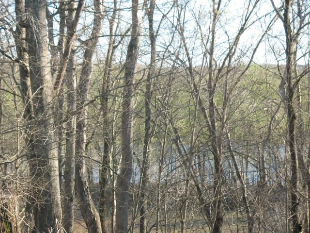 0 Patricia Cir, Dover, TN 37058 (MLS #1711206) :: RE/MAX Homes And Estates
