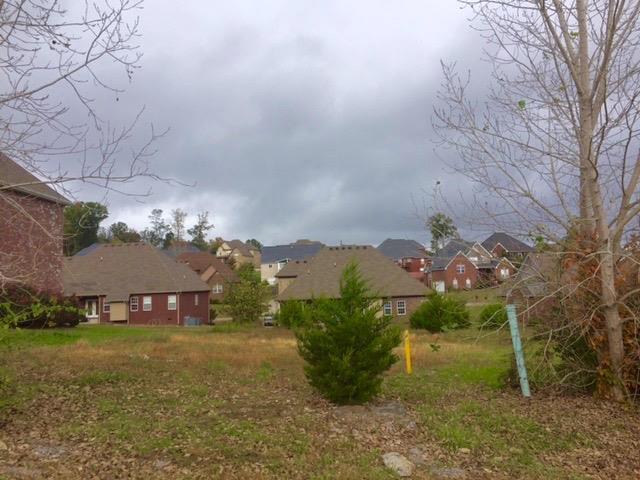 508 Mcgrath Dr, Smyrna, TN 37167 (MLS #1874645) :: John Jones Real Estate LLC