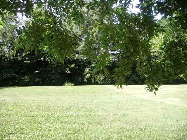 404 College St, Lafayette, TN 37083 (MLS #1906596) :: RE/MAX Choice Properties