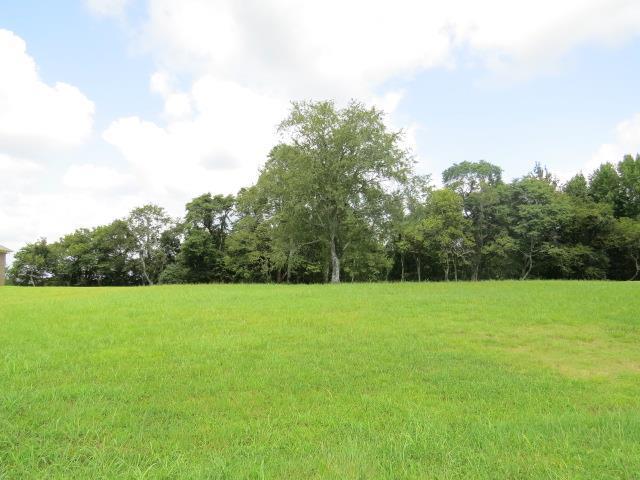 175 Rambling Rdg, Pulaski, TN 38478 (MLS #1908103) :: John Jones Real Estate LLC