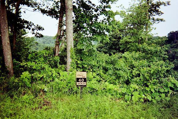 40 Deer Path Ct, Smithville, TN 37166 (MLS #1938902) :: CityLiving Group