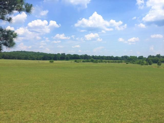 3510 Hwy 231 North, Shelbyville, TN 37160 (MLS #1939334) :: Team Wilson Real Estate Partners