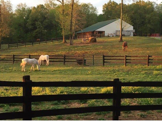 3801 Lake Rd, Woodlawn, TN 37191 (MLS #2010348) :: Clarksville Real Estate Inc
