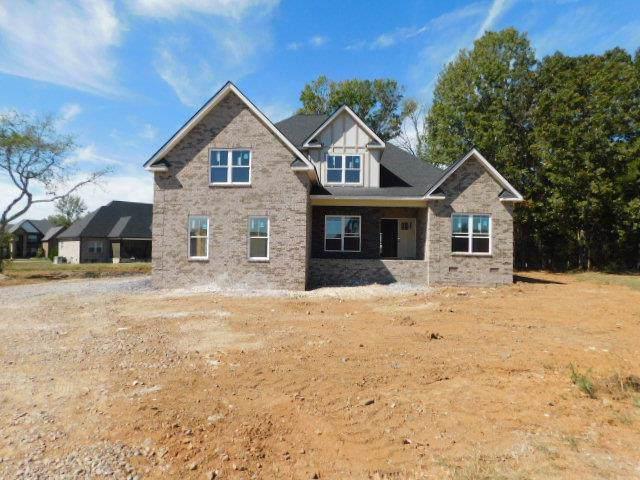 1213 Alex Walker Dr, Christiana, TN 37037 (MLS #RTC2081913) :: RE/MAX Homes And Estates