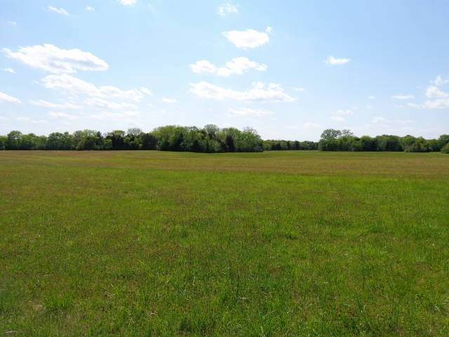 0 Cedar Grove Rd N, Chapel Hill, TN 37034 (MLS #RTC2142868) :: HALO Realty