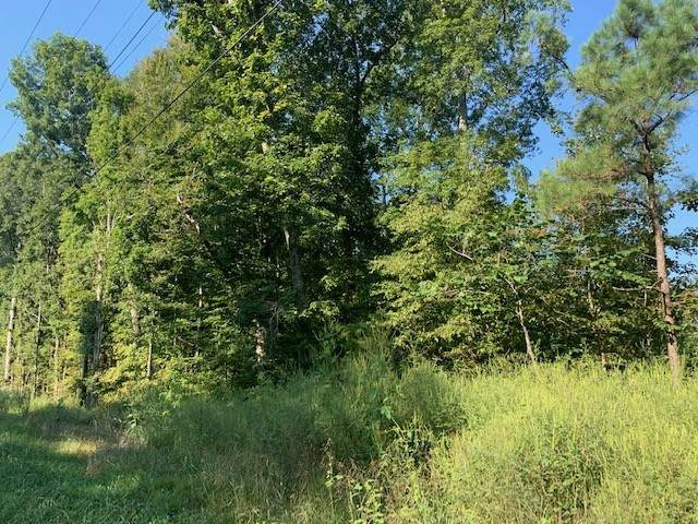 0 Hwy 70, Kingston Springs, TN 37082 (MLS #RTC2186209) :: Nashville on the Move
