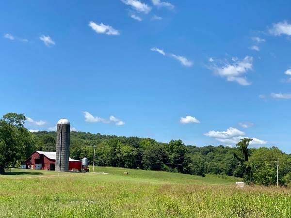 1140 Hearn Hill Rd, Watertown, TN 37184 (MLS #RTC2191925) :: Village Real Estate