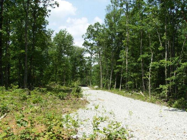 27 .1 Ac West View Road, Spencer, TN 38585 (MLS #RTC2193589) :: Fridrich & Clark Realty, LLC