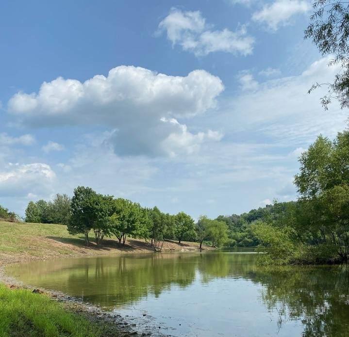1695 Old Lake Rd - Photo 1