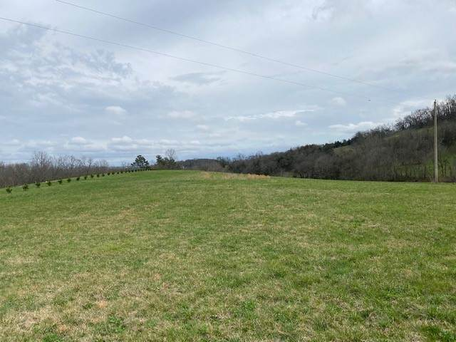 1 Puncheon Camp Rd, Bell Buckle, TN 37020 (MLS #RTC2234709) :: Nashville on the Move