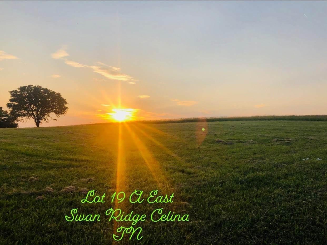 1234A East Swan Ridge - Photo 1