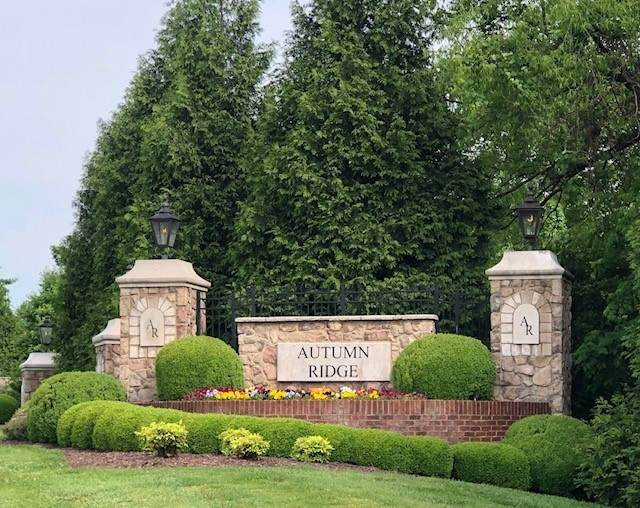 1003 Autumn Ridge Court, Spring Hill, TN 37174 (MLS #RTC2253649) :: Nashville on the Move