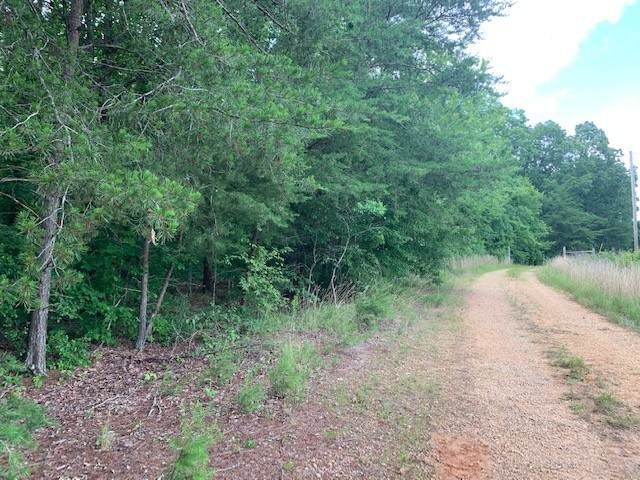129 Traceview Rd, Summertown, TN 38483 (MLS #RTC2261234) :: Village Real Estate
