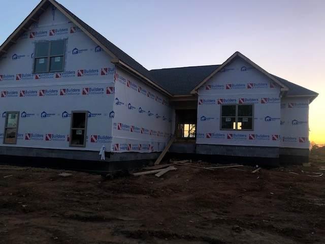 20 Calista Rd, White House, TN 37188 (MLS #RTC2134711) :: Village Real Estate
