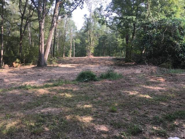 0 Buck Branch Rd, Duck River, TN 38454 (MLS #RTC2186106) :: The Milam Group at Fridrich & Clark Realty
