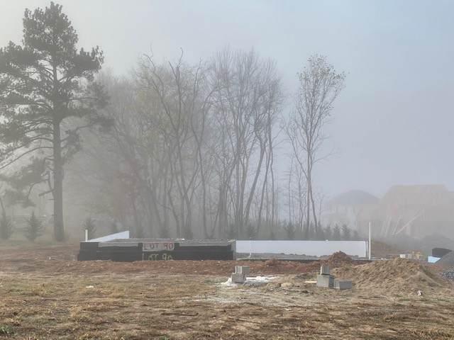 90 River Chase, Clarksville, TN 37043 (MLS #RTC2205033) :: Village Real Estate