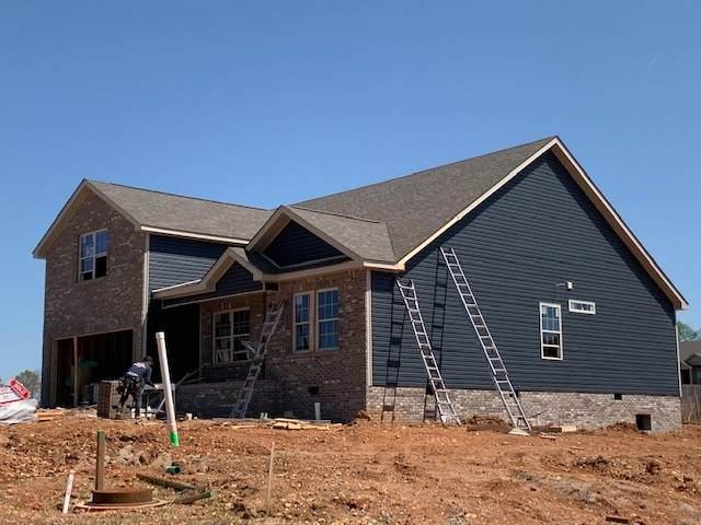 501 Macy Lynn Drive, Clarksville, TN 37042 (MLS #RTC2233581) :: Trevor W. Mitchell Real Estate
