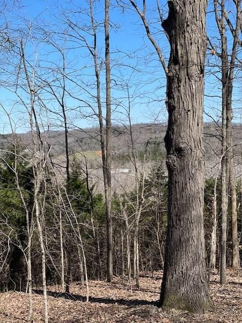 1050 Louisville Hwy N, Goodlettsville, TN 37072 (MLS #RTC2237501) :: Village Real Estate