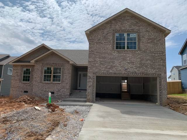 1180 Elizabeth Lane, Clarksville, TN 37042 (MLS #RTC2137055) :: Nashville on the Move