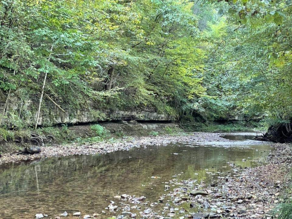 1971 Short Creek Rd - Photo 1