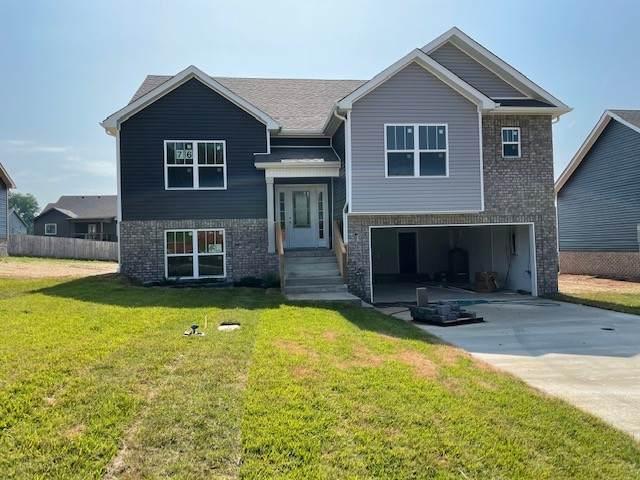 505 Macy Lynn Drive, Clarksville, TN 37042 (MLS #RTC2255418) :: Oak Street Group