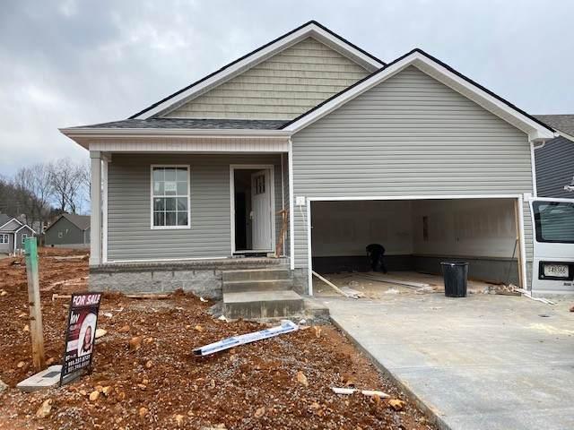 207 Chalet Hills, Clarksville, TN 37040 (MLS #RTC2216875) :: Village Real Estate
