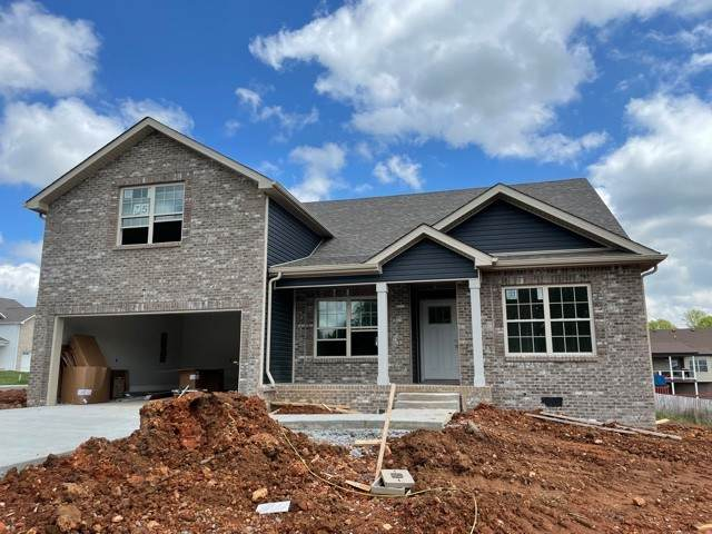 501 Macy Lynn Drive, Clarksville, TN 37042 (MLS #RTC2233581) :: Fridrich & Clark Realty, LLC