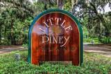 LOT 26 Piney Island Drive - Photo 5