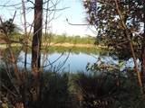 98252 Swamp Fever Lane - Photo 14