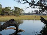98252 Swamp Fever Lane - Photo 2