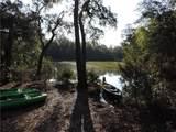 98252 Swamp Fever Lane - Photo 3