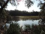 98252 Swamp Fever Lane - Photo 4