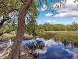 98252 Swamp Fever Lane - Photo 5