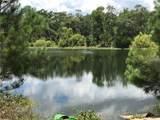 98252 Swamp Fever Lane - Photo 6