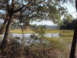 98252 Swamp Fever Lane - Photo 8