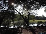 98252 Swamp Fever Lane - Photo 9