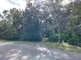 95305 Rainbow Acres Road - Photo 11