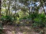 95305 Rainbow Acres Road - Photo 2