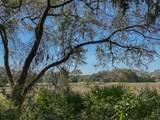 31 Marsh  Hawk Road - Photo 10