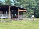95260 Barbaras Place - Photo 2
