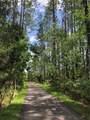 586 Buttonwood Loop - Photo 17
